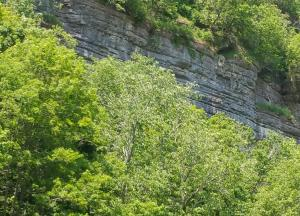 kentucky palisades from river