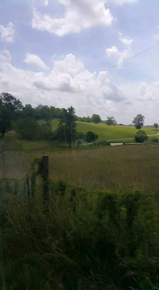 clark county 3