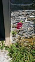Stone kitchen doorway.